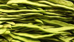 Çilek, fasulye ve az yağlı yoğurt meme kanseri riskini azaltıyor