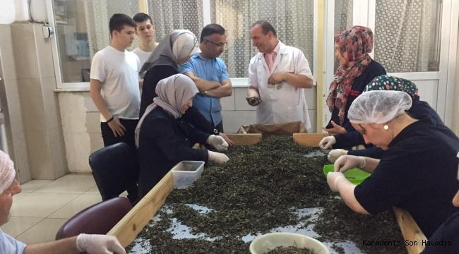 Vali Kemal Çeber, Cumhuriyet Çay Fabrikasını Ziyaret Etti