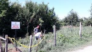 """""""Karasu Belediyesi Meyve Bahçesi İçin Fideler Toprakla Buluştu"""""""