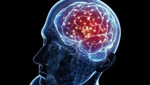 Sağlıklı yaşlanma için beyin sağlığını ihmal etmeyin!