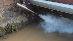 Yağış Sonrası İlaçlama Çalışmalarına Hız Verildi