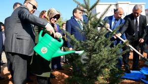 Milli Ağaçlandırma Günü'nde Trabzon'da Binlerce Fidan Dikildi
