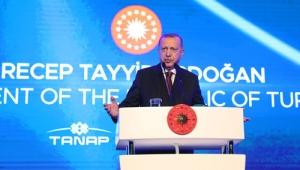 """""""TANAP, ülkemizin barışçıl vizyonunun en somut nişanesidir"""""""