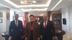 AKES-DER 'den Sağlık Bakan Yard. Prof.Dr. Emine Alp Meşe' ye ziyaret