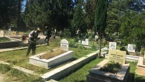 Mezarlıklara kapsamlı çalışma